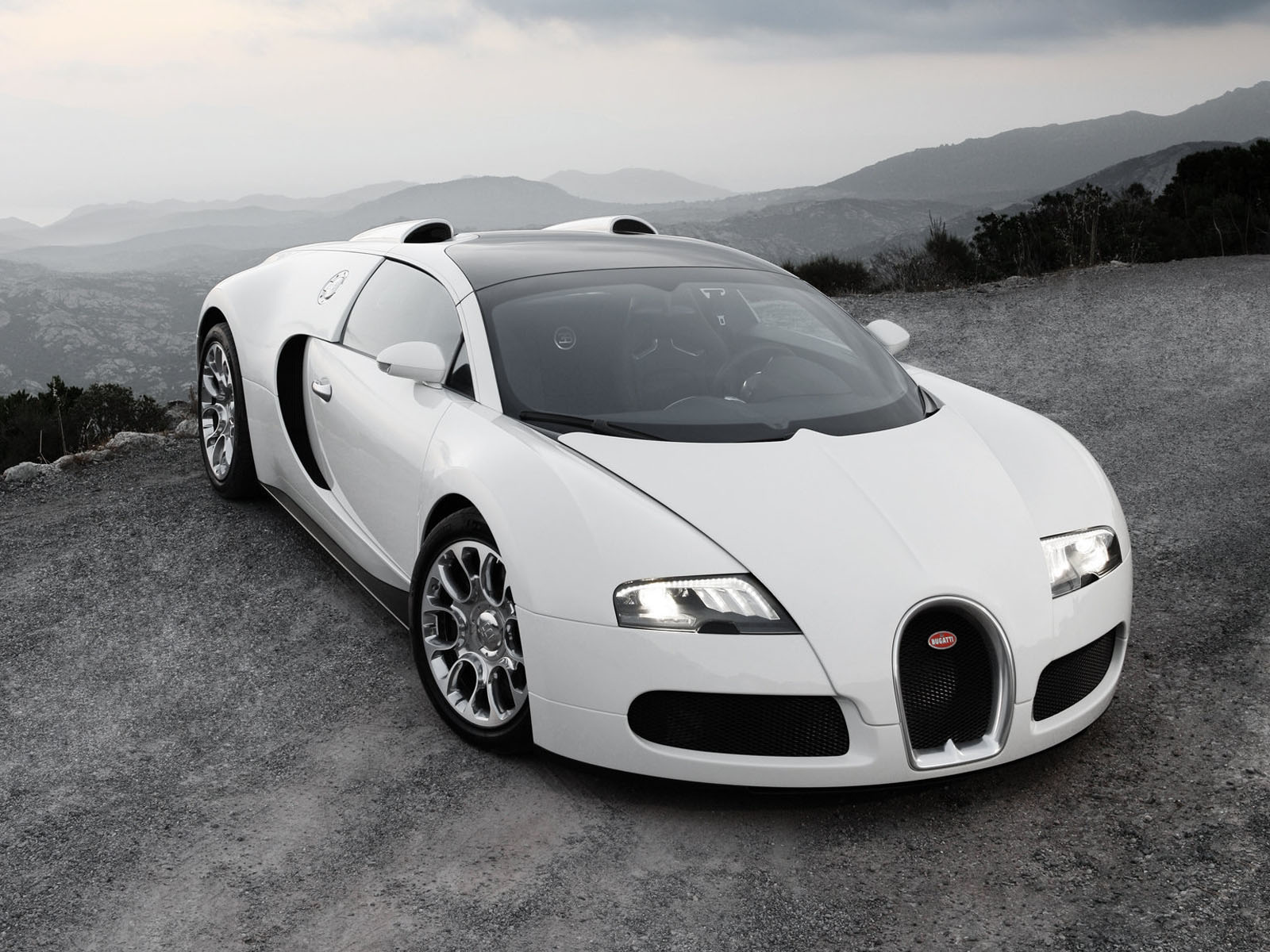 bugatti veyron super sport white wlhrlo engine information. Black Bedroom Furniture Sets. Home Design Ideas