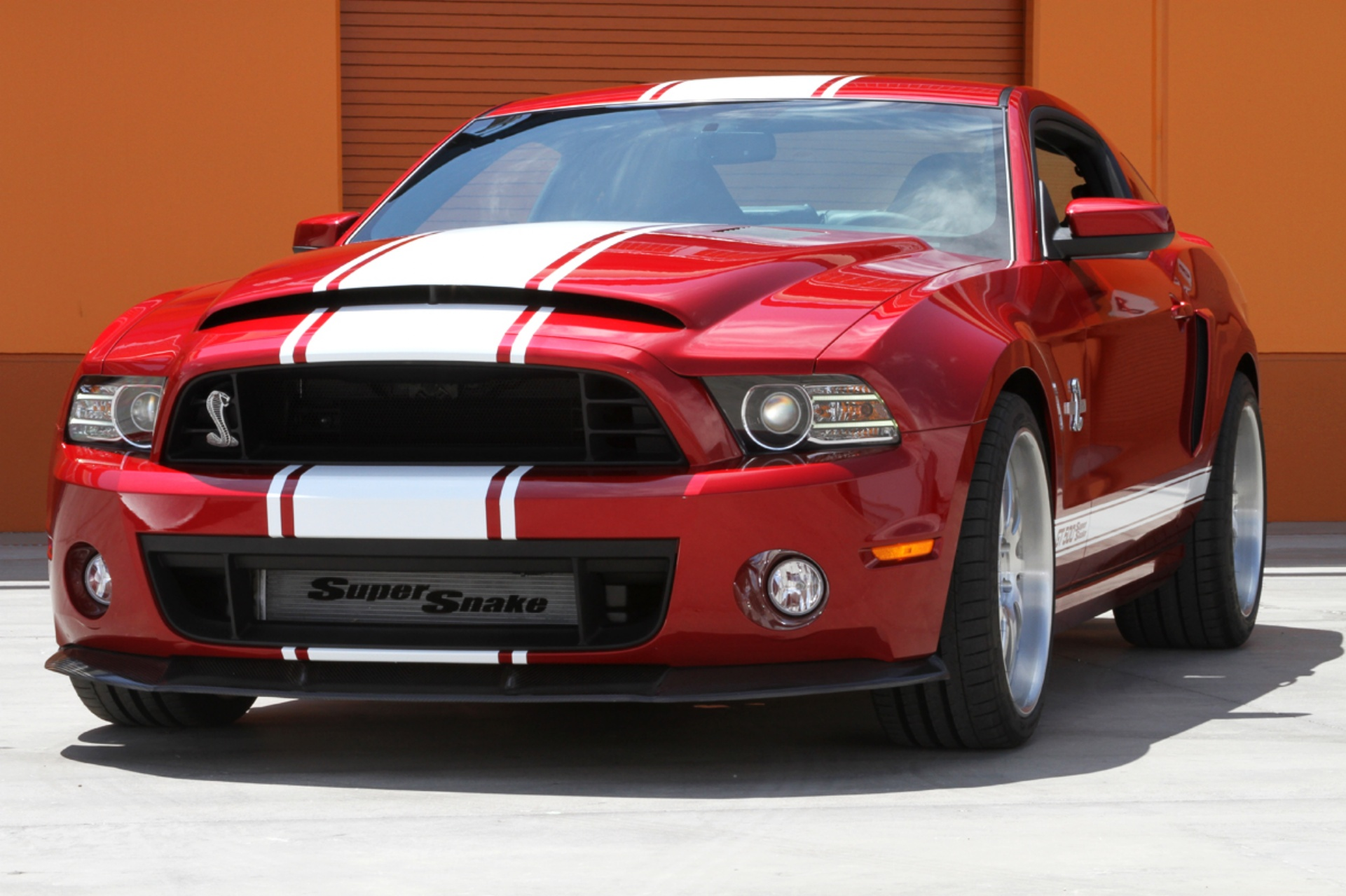 buy ford shelby gt500 super snake. Black Bedroom Furniture Sets. Home Design Ideas